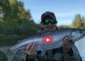 "Putting the Trokar TK2 Pro ""V"" to the test on a Wild Spring Chinook"