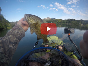 Cinco De Mayo Smallmouth Fishing