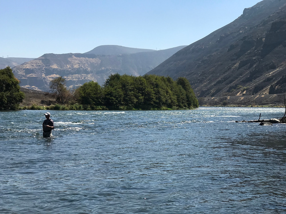 Bill Matthews Outdoors - Deschutes River