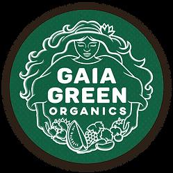 gg Logo 4.png