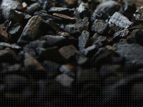 Biology Series - Black Pearl
