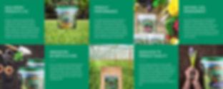 gaia green images.jpg