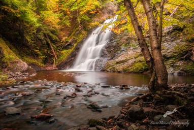 Annandale falls, Wentworth