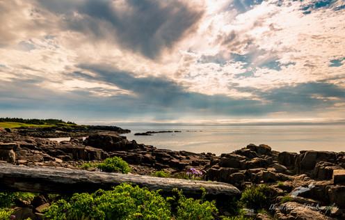 Seal Cove, Brier Island Nova Scotia