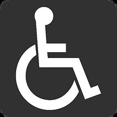 handicap-759184_edited.png