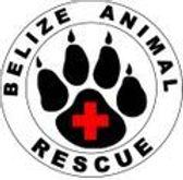 Belize Animal Reascue ACES Crocodile.jpg