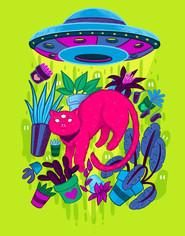 Pink_at_big.jpg.jpeg