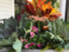 Fall container design with kale