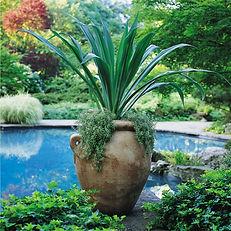 olive urn by pool.jpg