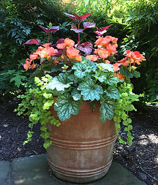 Spring Container Design with shade plants