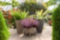 3 Grey Pots2.jpg