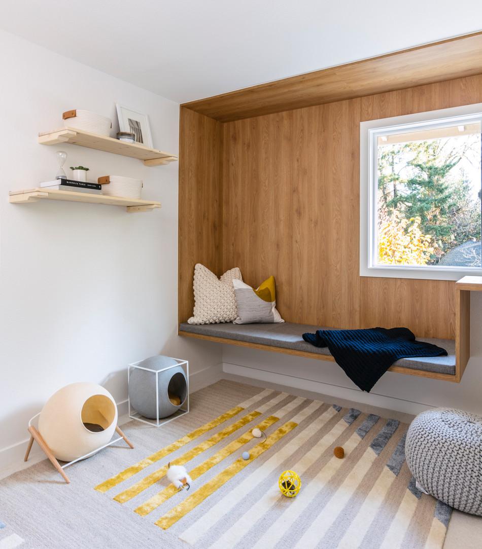 cat lounge interior design