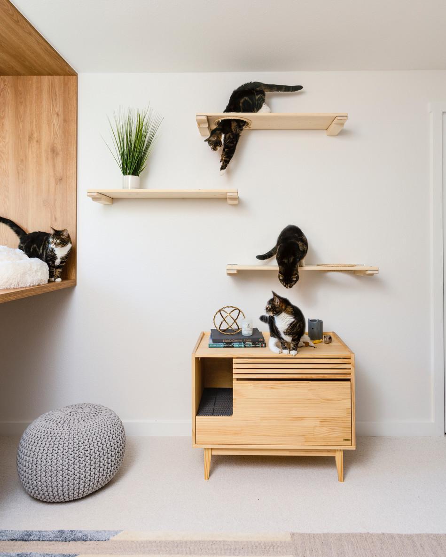 cat lounge Interiors by Popov