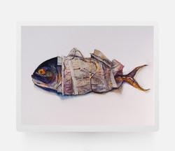 Newspaper&fish