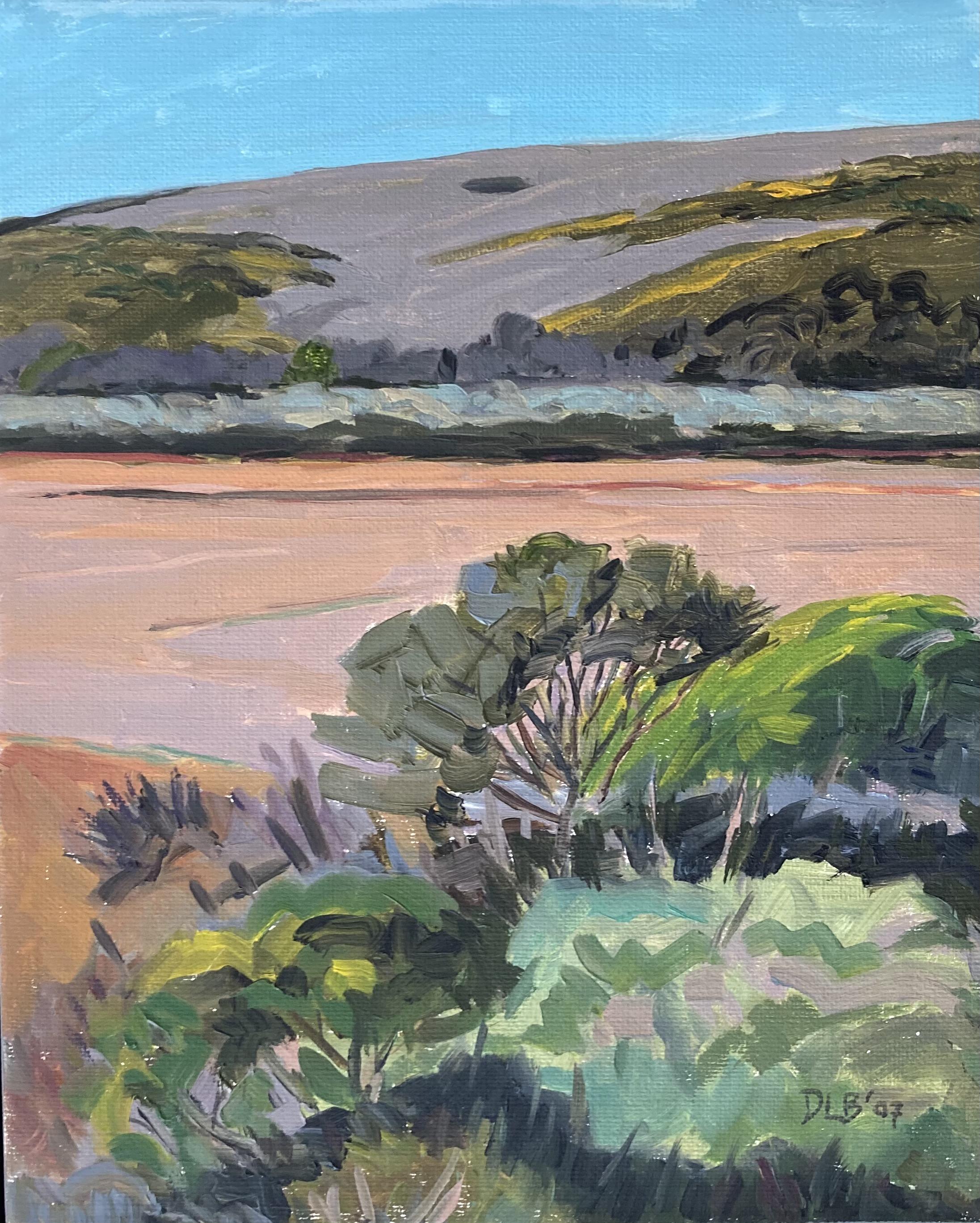 Tidal Flats- North Marshal, 2007