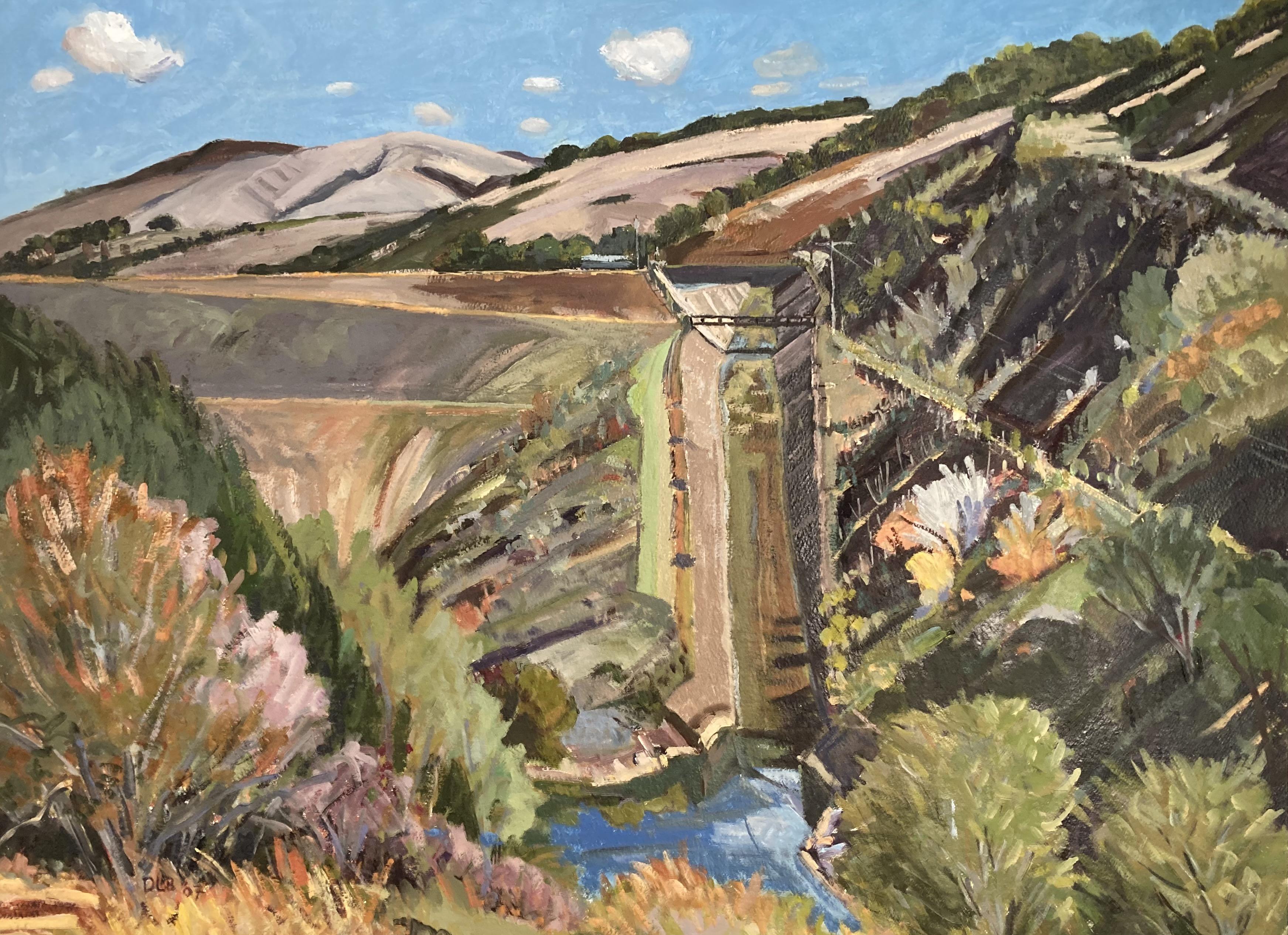 Nicasio Reservoir Spillway, 2006-2007
