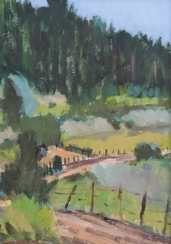 Forest Road from Truchas, 2016