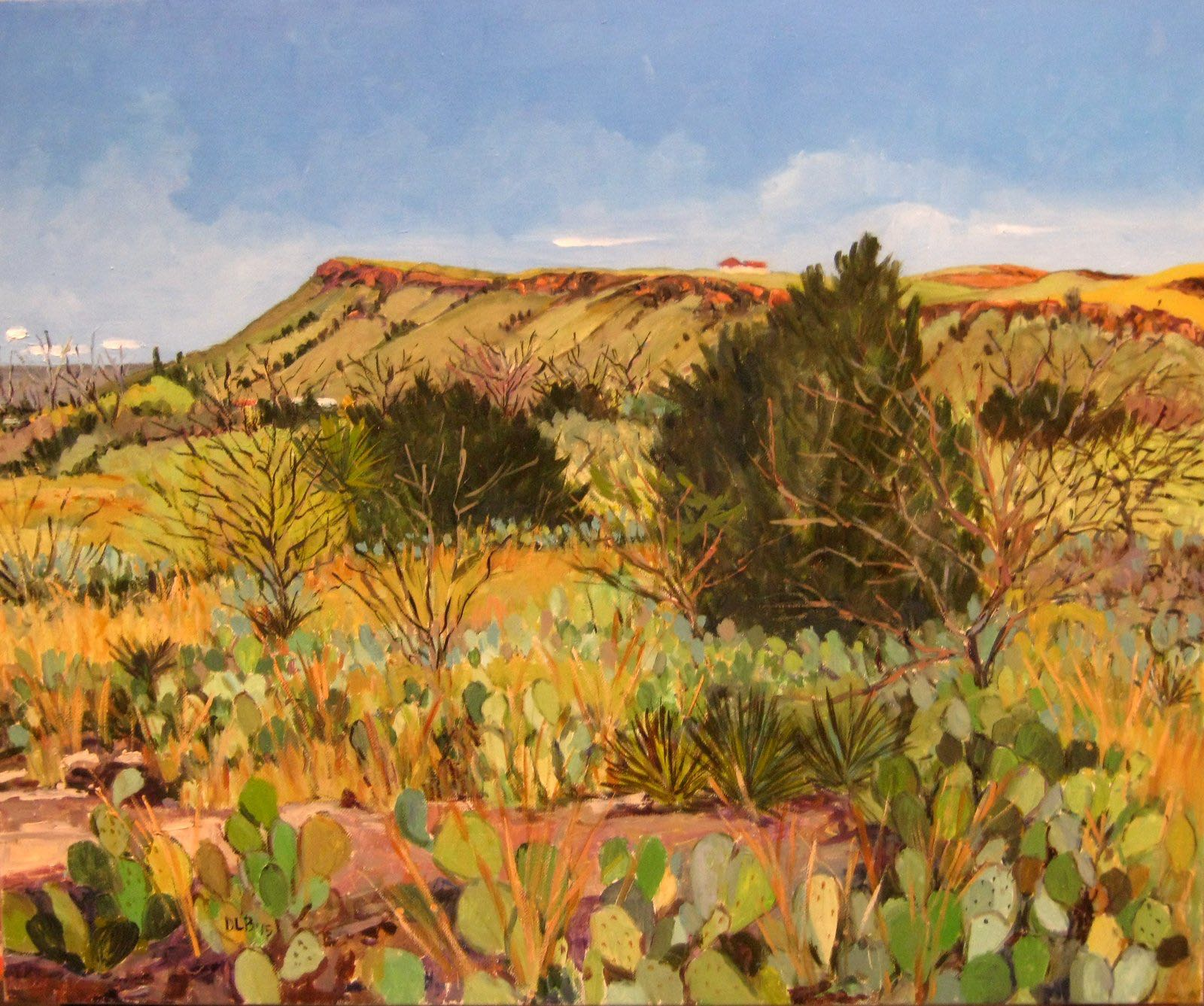 Cactus-Field-Delores-Mountain-copy
