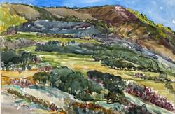 Wildcat Ranch View, 2013