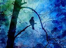 pr Bird on Branch.jpg