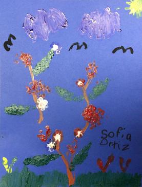 Sofia O.