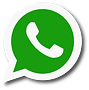whatsapp-vector.png