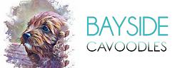 BAYSIDE LOGO 2.png