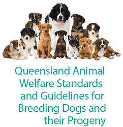 Queensland Breeding Dogs Code of Practice