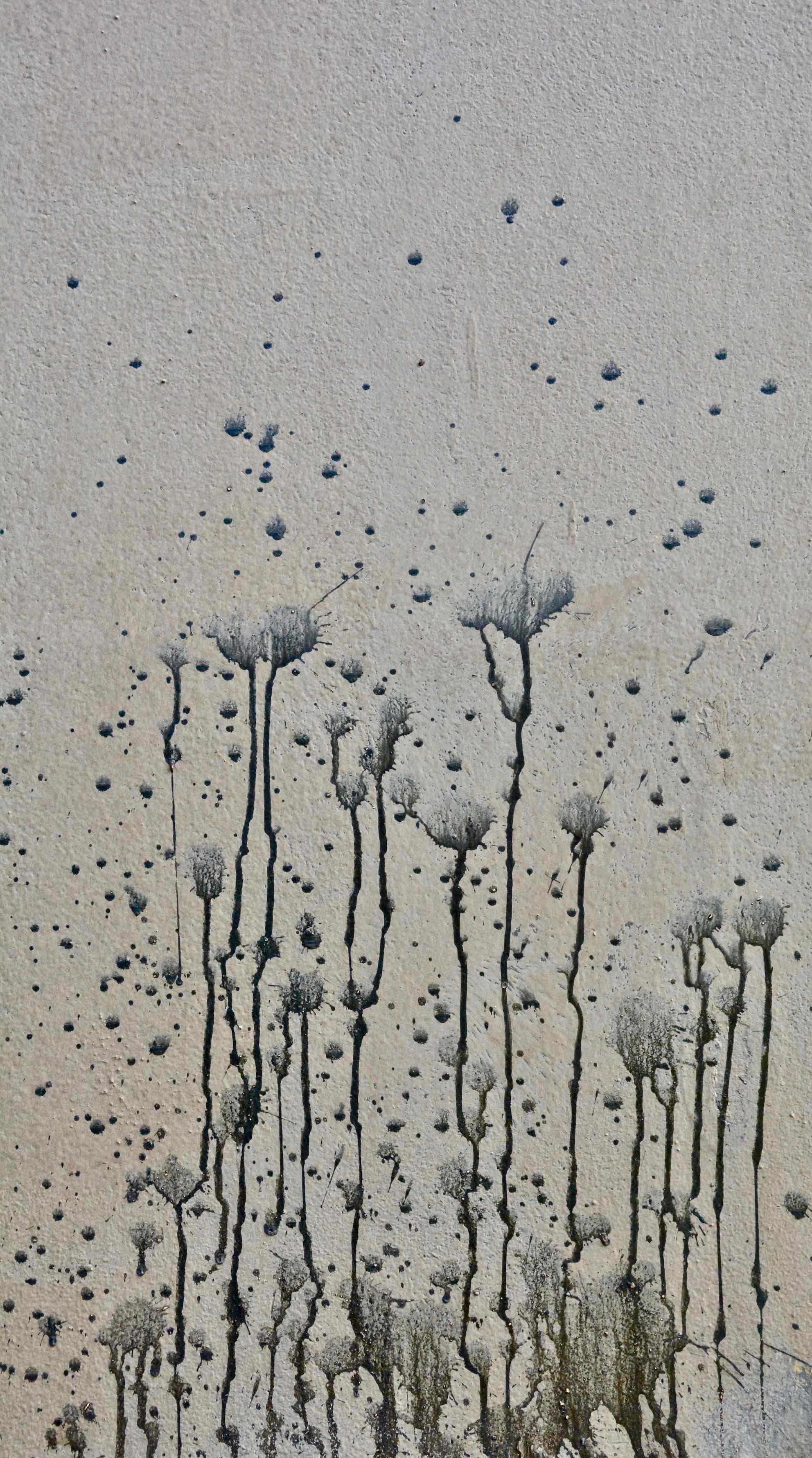 fleurs des docks