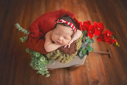 Newborn Heloisa (27).jpg