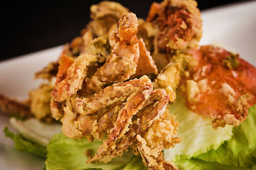 Soft Shell Crab.jpeg