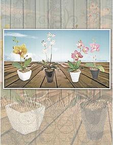 Productos de importación para la decoración y el jardín: follajes, plantas artificiales, macetas, jarrones,vasijas, portarretratos, espejos, accesorios  y novedades. Orquideas