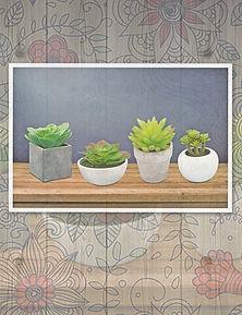 Productos de importación para la decoración y el jardín: follajes, plantas artificiales, macetas, jarrones,vasijas, portarretratos, espejos, accesorios  y novedades.  Agaves, Cáctus y suculentas.