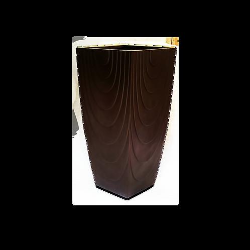 CONGOTA01