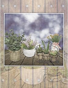 Productos de importación para la decoración y el jardín: follajes, plantas artificiales, macetas, jarrones,vasijas, portarretratos, espejos, accesorios  y novedades. Flores, Lavandas y Tréboles.