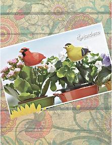Productos de importación para la decoración y el jardín: follajes, plantas artificiales, macetas, jarrones,vasijas, portarretratos, espejos, accesorios  y novedades. Mascotas para plantas