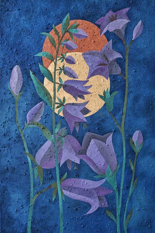 Bellflowers (2021) ●