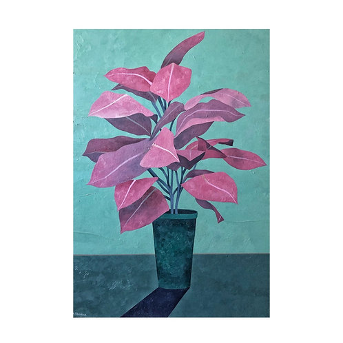 Roosa taim / A pink plant (2020)