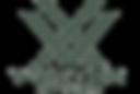 Vortex-Optics.png