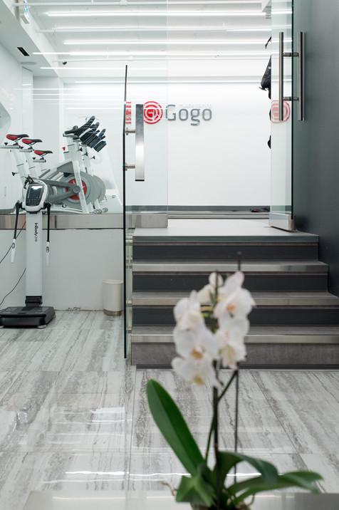 GoGo Entry.jpg