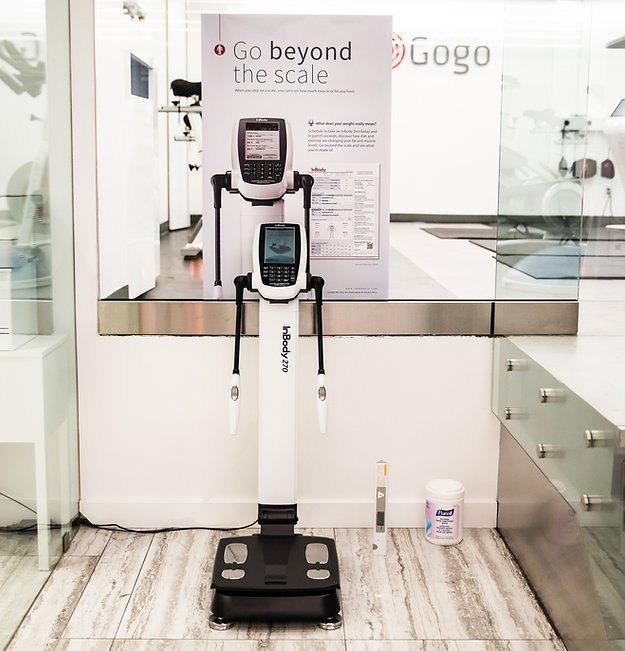 GoGo Body Assessment Device.jpg