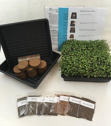 MICROGREENS HOME GROWING KIT