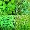 Thumbnail: Herb & Flavor Refill Set