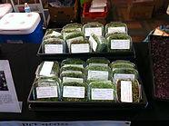 Local Microgreen Blends
