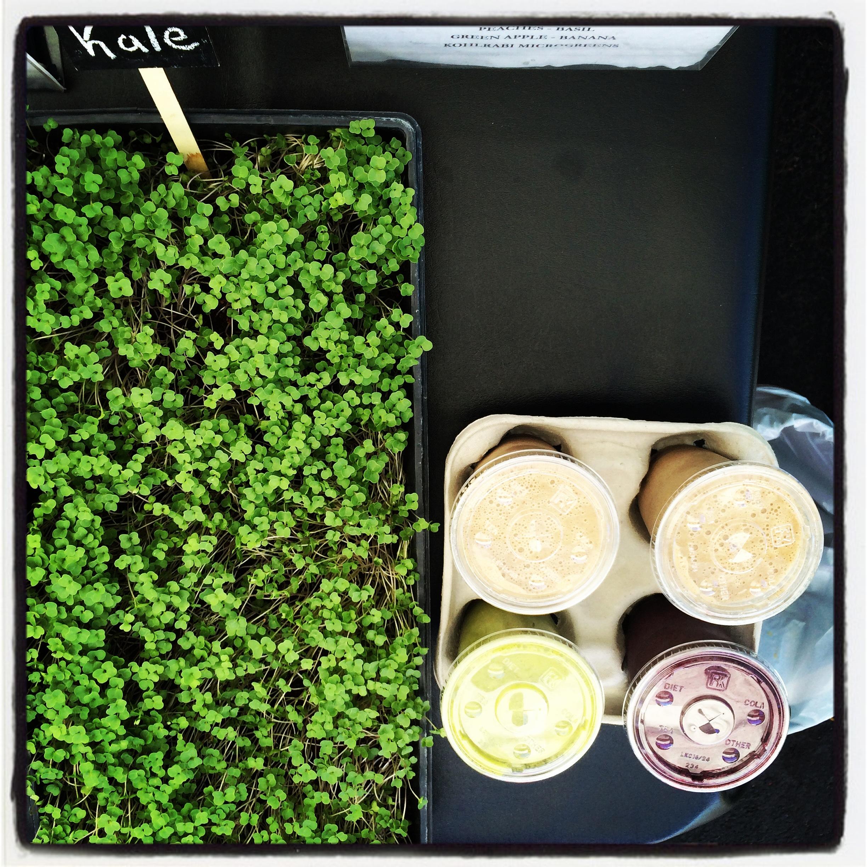 Healthy Vegan microgreens smoothies