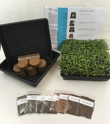 DELUXE MICROGREEN HOME GROW KIT - 3 MONTHS OF SUPPLIES