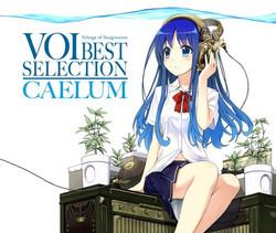 VOI best selection - Caelum