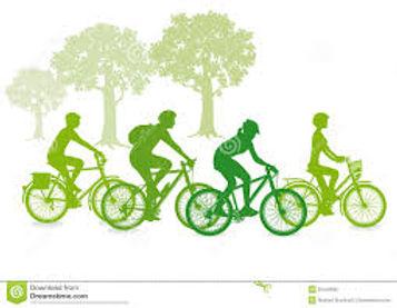 green cyclist.jpg