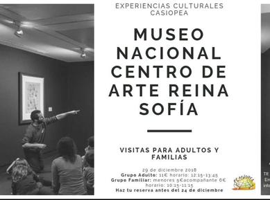 Visita al museo Reina Sofia