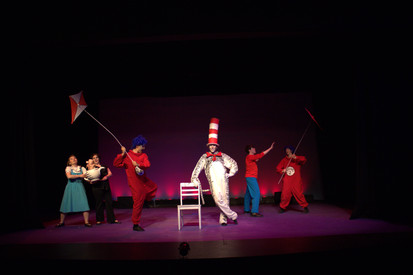 Costume Design  |  The Cat In The Hat  |  Shawnee Summer Theatre